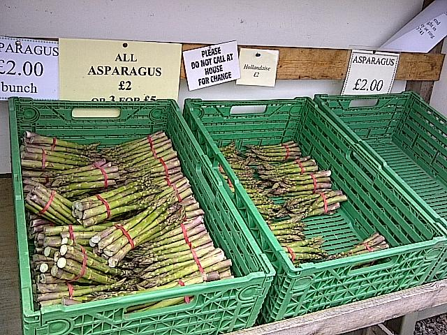 Locally grown asparagus for sale in Southwold