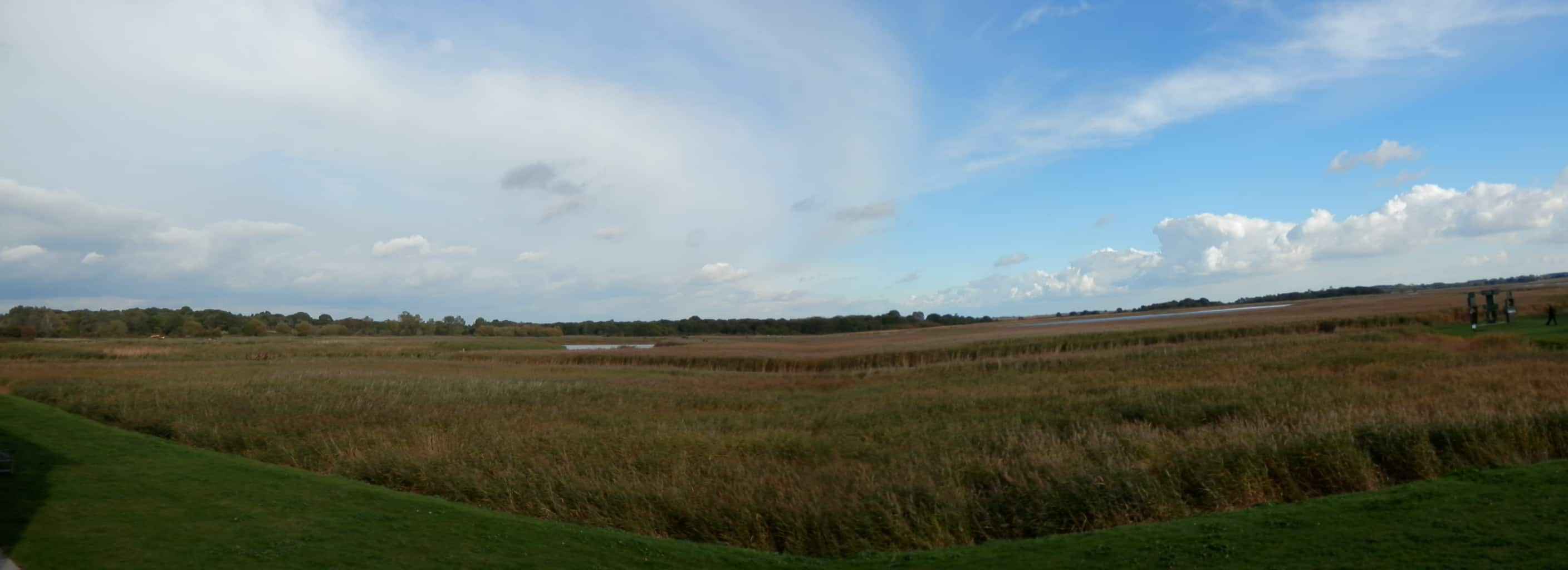Snape Maltings looking over the reedbeds