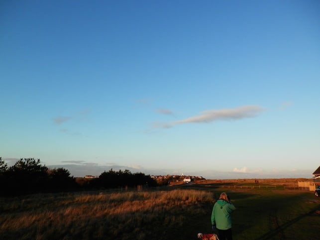 November light on Southwold beach dunes