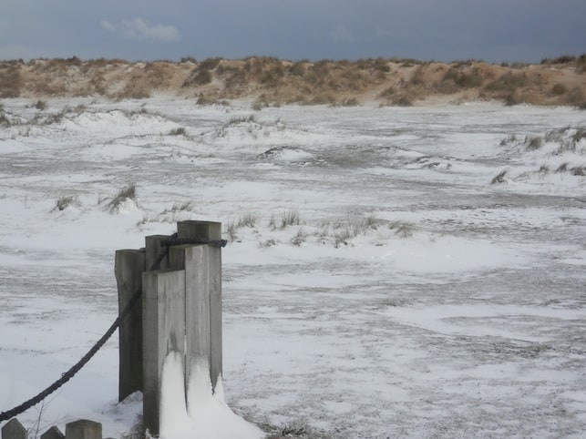 The winds today have blown snow horizontally across Southwold beach and dunes